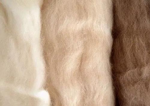 什么是羊绒?羊绒面料的优缺点?