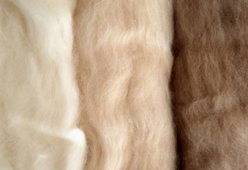 羊绒和羊毛的区别?羊绒大衣在家怎么洗?